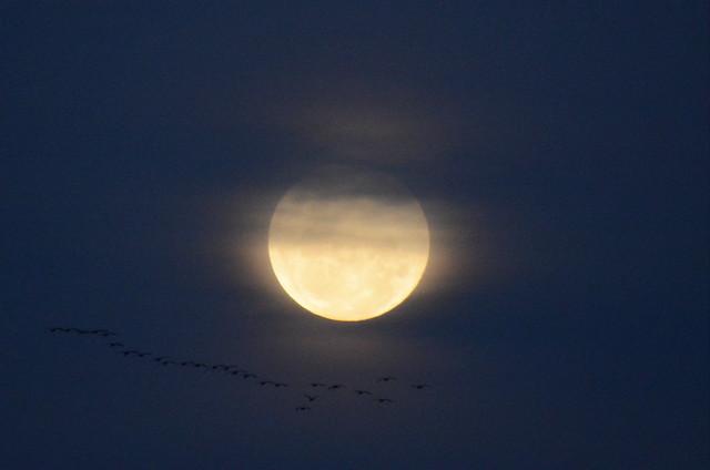A lua é um tiro-ao-alvo