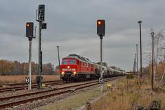 MEG 232 489-5 mit dem Cemex in Bad Freienwalde