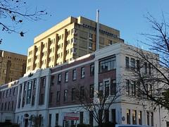 A day at Dunedin hospital ER- Micaela- migraine