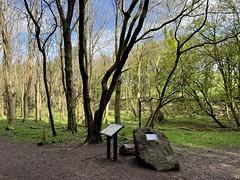 Cairn marking site of UFO encounter in Dechmont woods