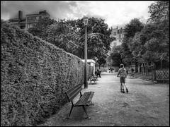 Square de Lu2019oiseau Lunaire * Paris