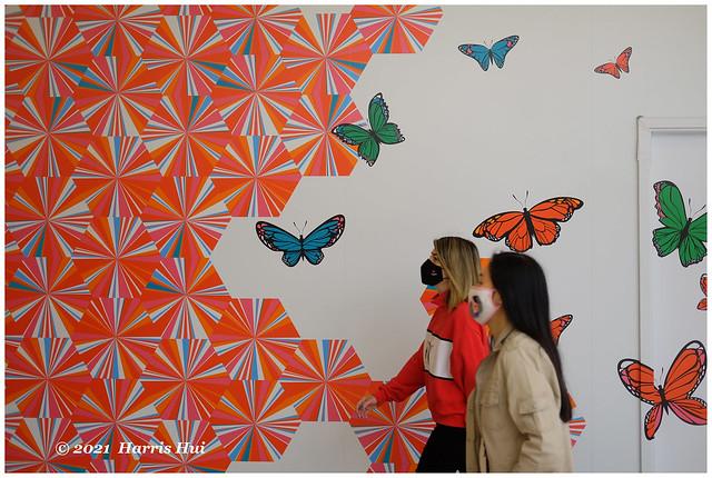 Butterfly Effect - Metrotown XT9453e