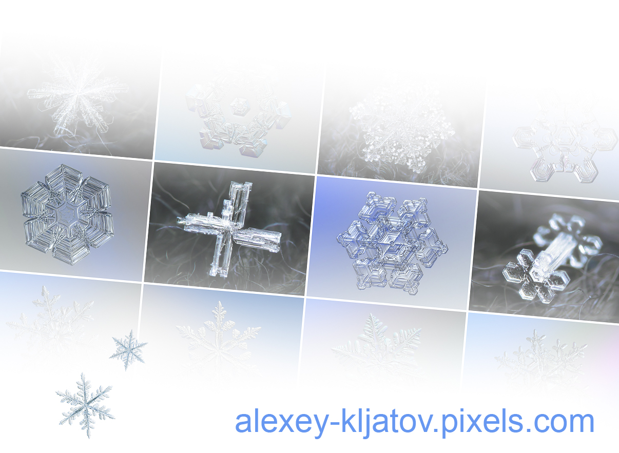 Macro photos of real snowflakes by Alexey Kljatov: prints, wall art, ideas for home and office decor, interior designs and gifts