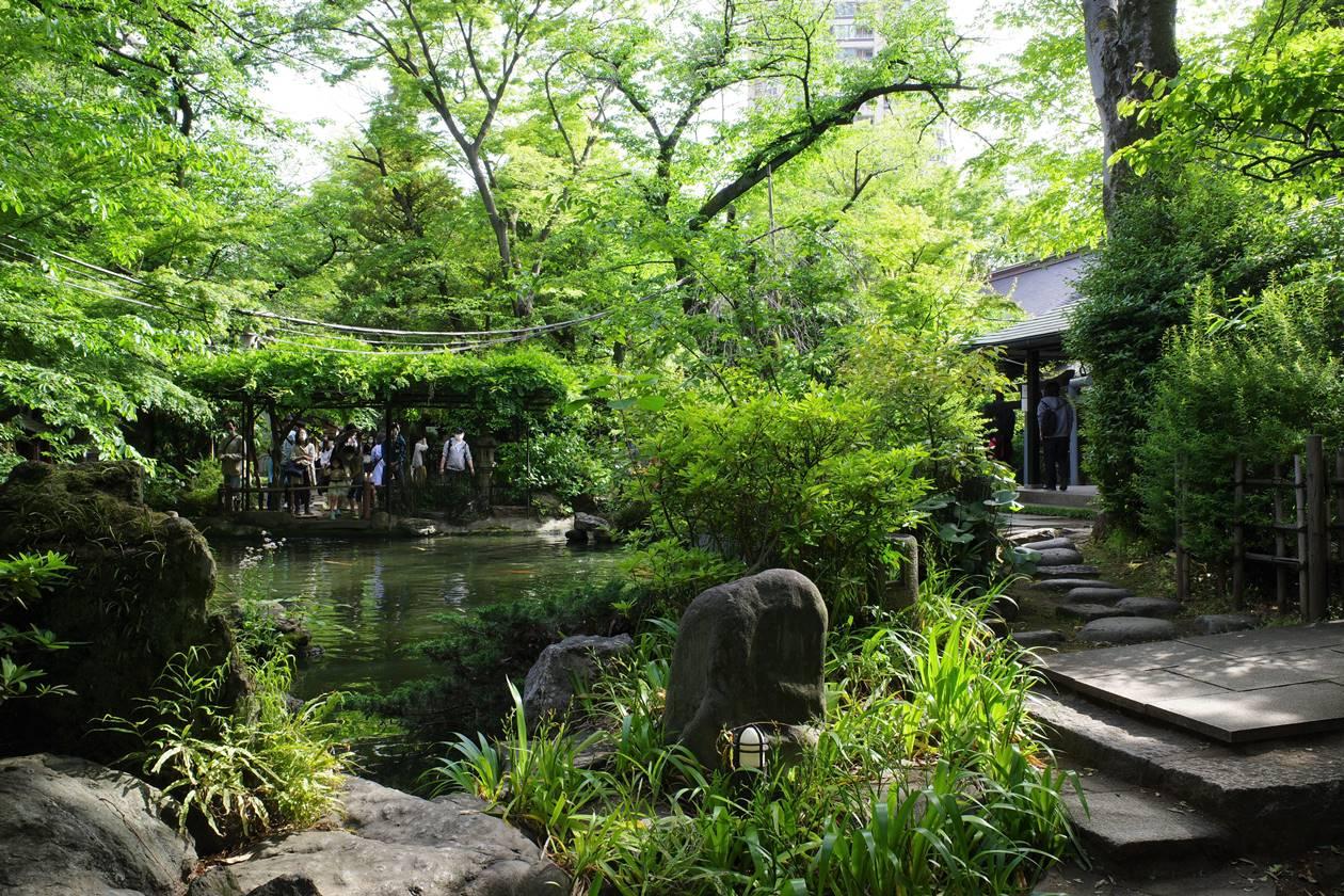 【東京港区】愛宕山の新緑 23区最高峰へ日帰り登山