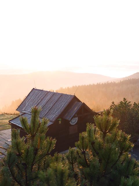 Misty rising sun