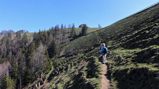 Zwischen Josenberg und Scheidegg
