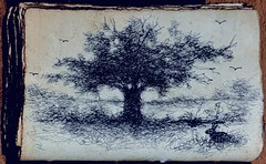 New sketch book 2021. Ballpoint doodle of old tree in the park.