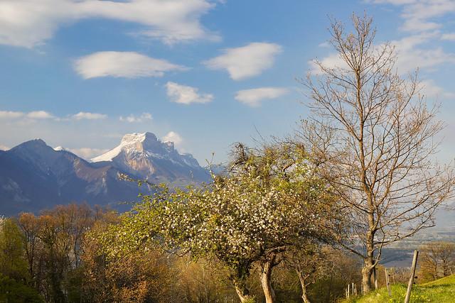 La Dent de Crolles (Massif de la Chartreuse, Isère). Photo prise de Venon (38)