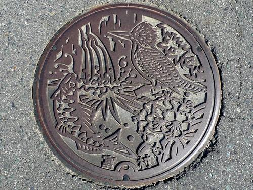 Tomi Okayama, manhole cover (岡山県富村のマンホール)