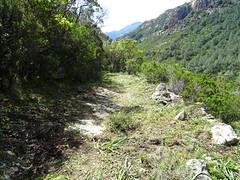 Le chemin de Paliri en RG de la Figa Bona