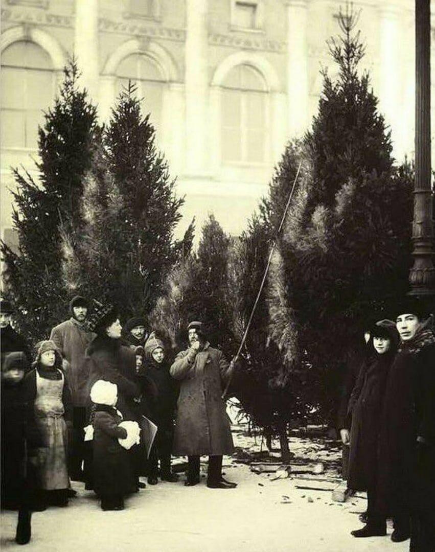 1913. Елочный базар в Екатерининском саду