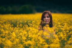 Isabelle in the rapeseed