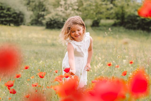 Wonderful flower field