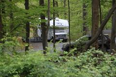 Second campsite/Cunningham Falls State Park
