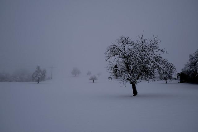 Winterlandschaft im Kanton Luzern