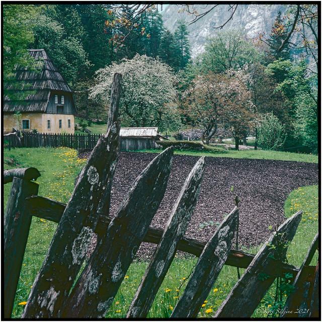 The yellow farmhouse in Trenta_1983_OM2