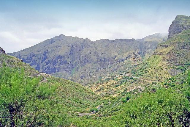 Espagne, les Canaries l'ile de Ténérif, la montagne verte