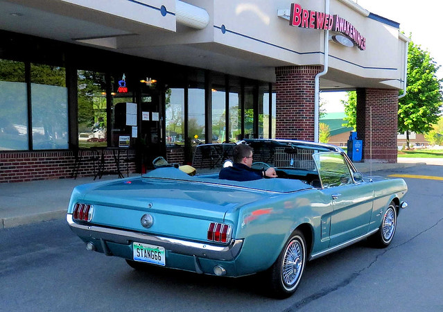 Mustang!  The Original
