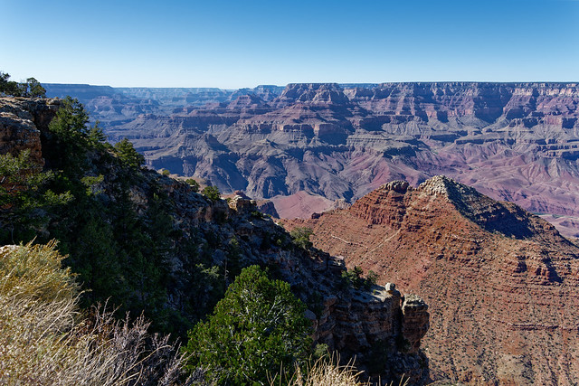 Natural Beauty Always Springs Eternal! (Grand Canyon National Park)