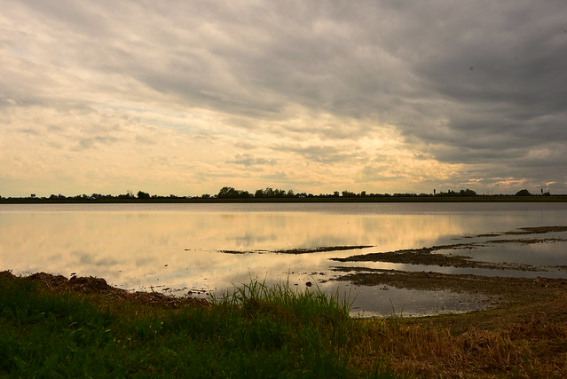 Paesaggi rurali - risaia