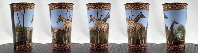 Giraffe Cup Turnaround