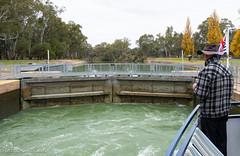 Lock 11 on the Murray.jpg