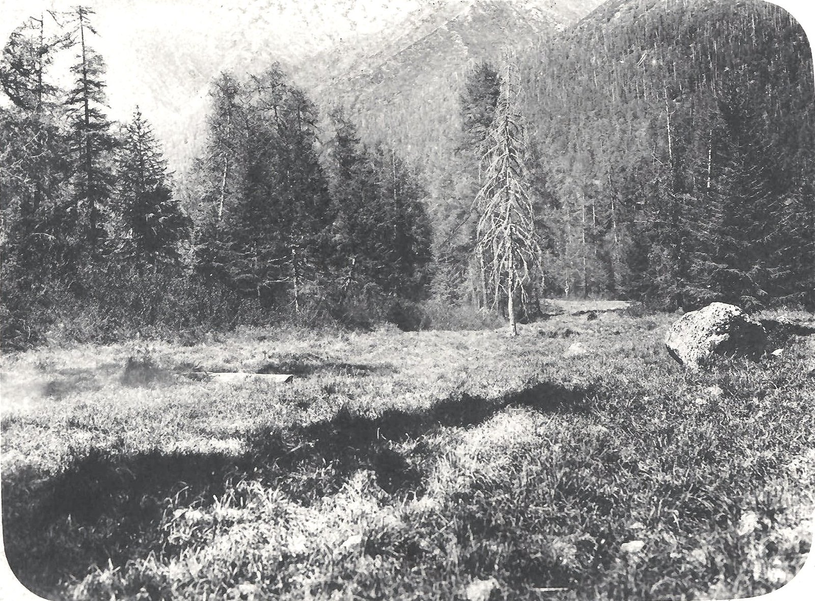 07. Долина реки Большой Туксаньи