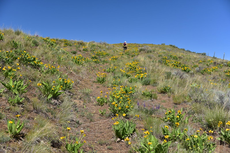 Postage Stamp Butte hike