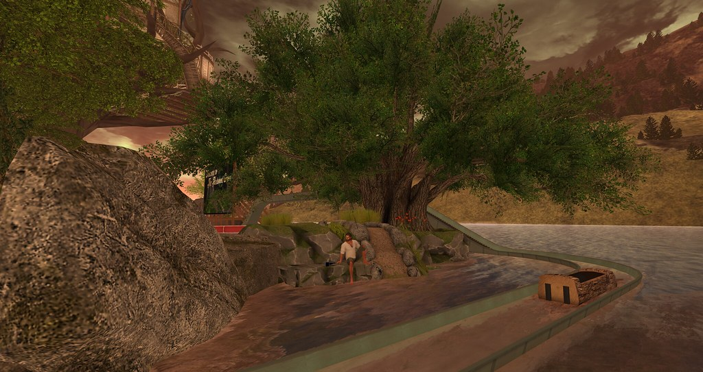 New area at The Redwood Grove.