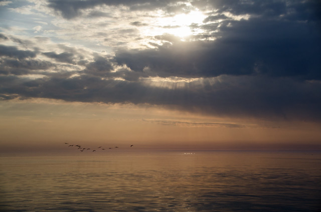 Daybreak DSN_5365