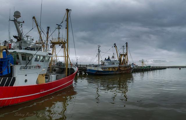 De Nieuwe Vissershaven in Harlingen op maandag 17 mei 2021