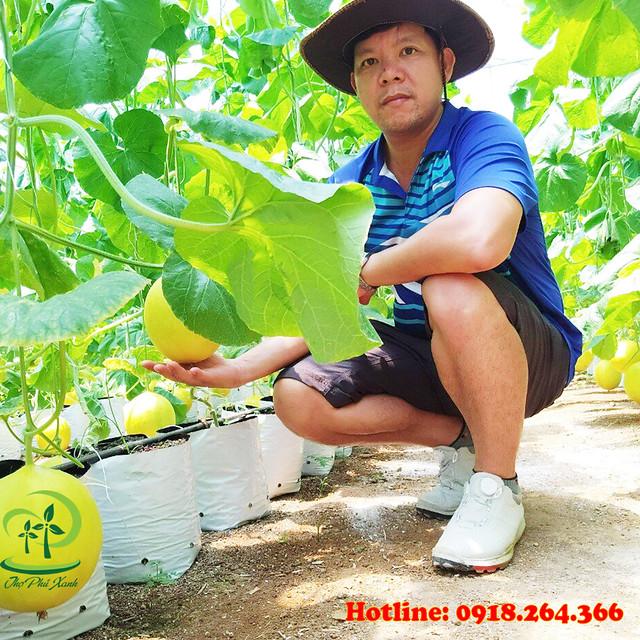 Sự phát triển của nền nông nghiệp công nghệ cao xanh sạch