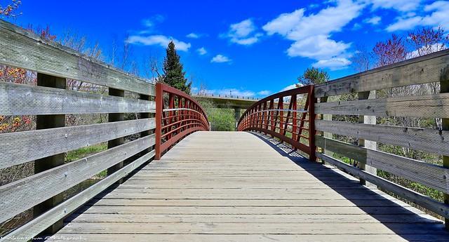 Bridges and Overpass