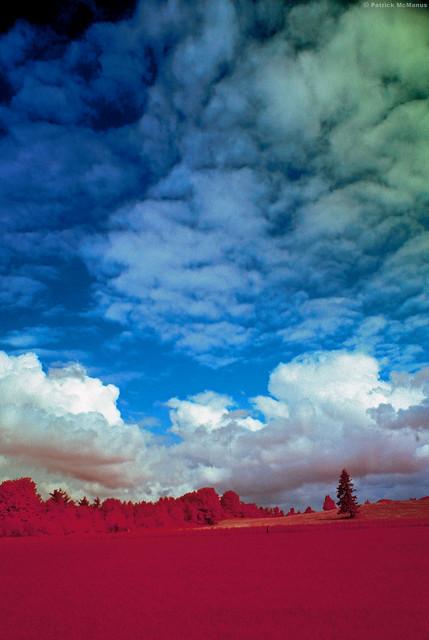 Kodak Infrared - Field of Dreams