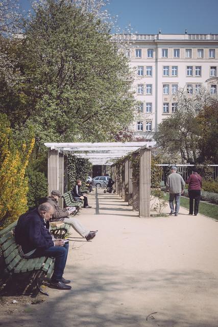 Rosengarten an der Karl-Marx-Allee