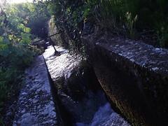 Sonidos del agua..
