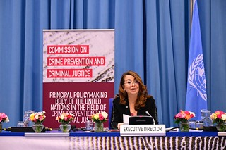 Commission on Crime Prevention and Criminal Justice at its thirtieth session
