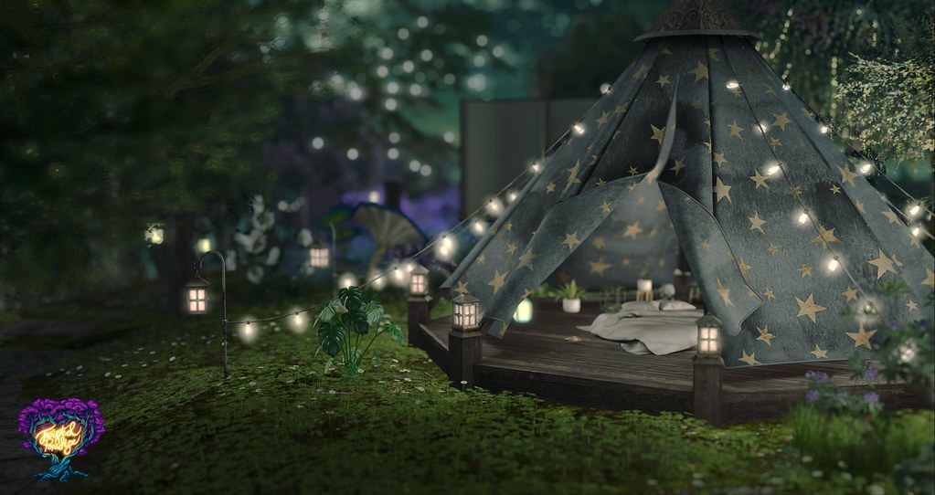 Glamping under the starry nightsky