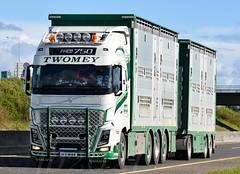 Worth the u-turn & 20KM catch up ud83dude02 Twomey Livestock Volvo FH750 Globetrotter 211-C-9023