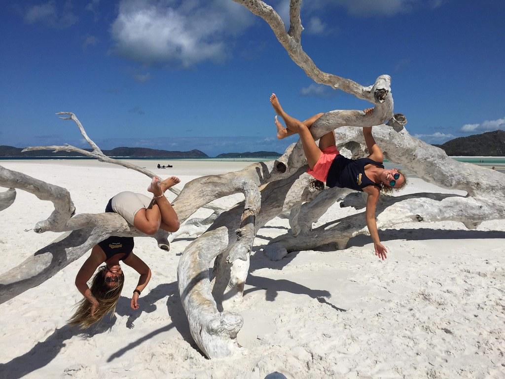 Whitehaven-Beach-tree-AUs