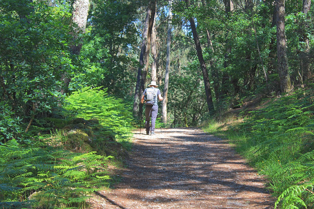 Hiking, Jack Montgomery