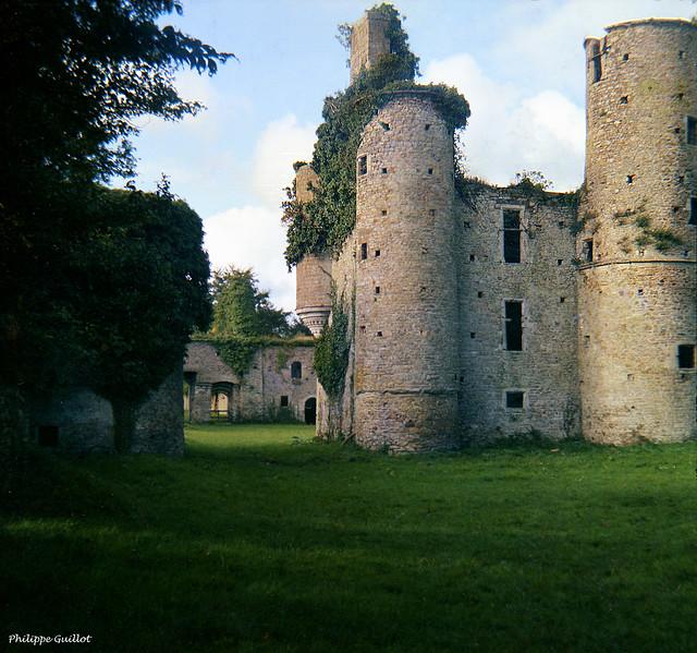 Les ruines du château de Montfort