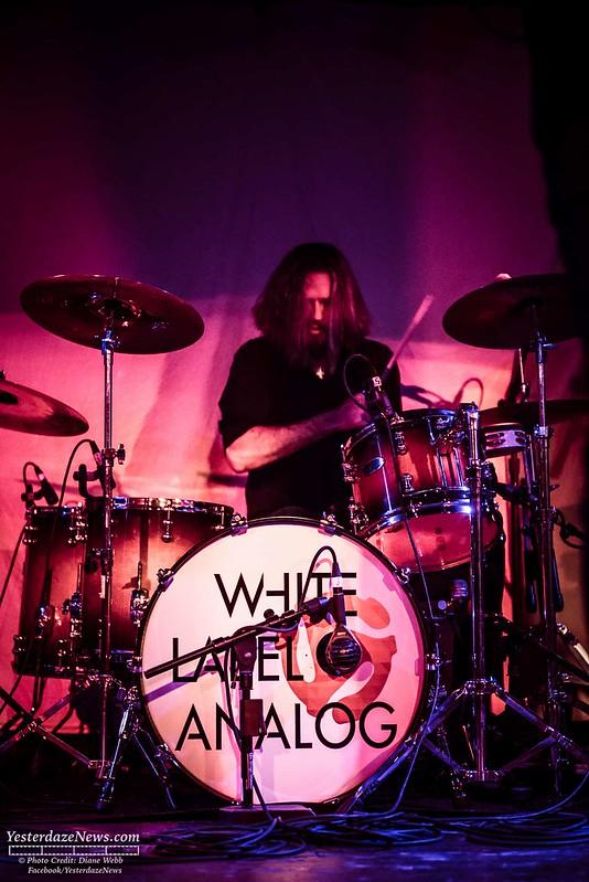 White Label Analog  2016 (c) Photo by Diane Webb 6