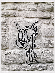 grafitti cathays cardiff may 2021