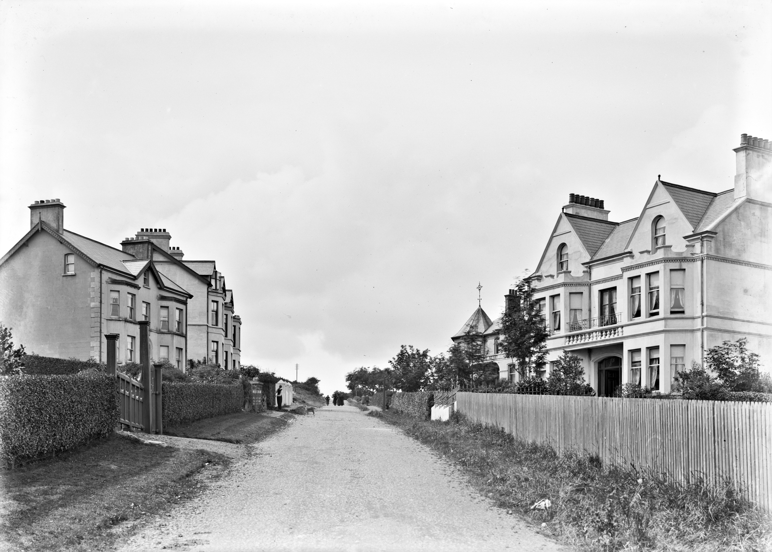 POW Avenue in Belfast, complete with resident canine?