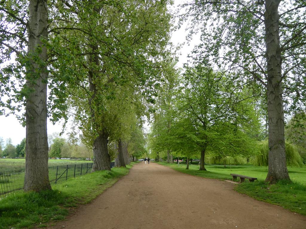 The Broad Walk, Christ Church Meadows, Oxford