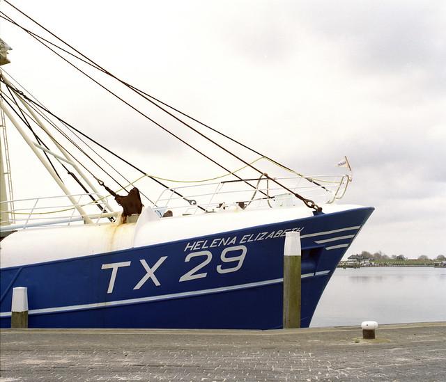 TX 29