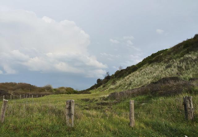 Landscape Westkapelle Zeeland
