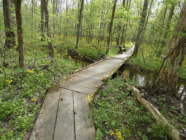 Beanblossom Bottoms Nature Preserve - Sycamore Land Trust