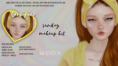 { wistaria } // sunday makeup kit - lel evo x